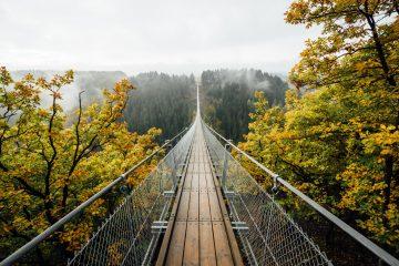 TWIYW bridge fall