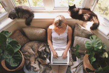 how to negotiate a flexible work schedule