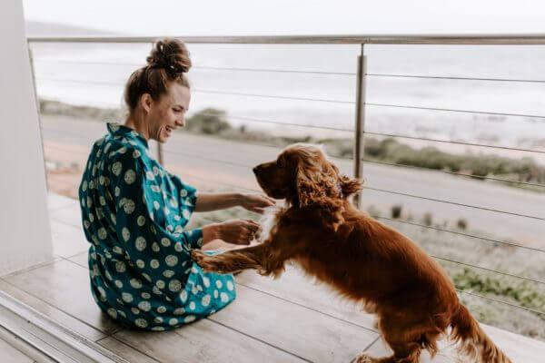 buying pet insurance